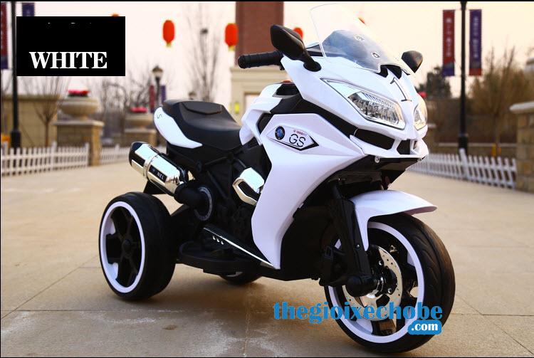 Xe máy điện trẻ em R1200GS