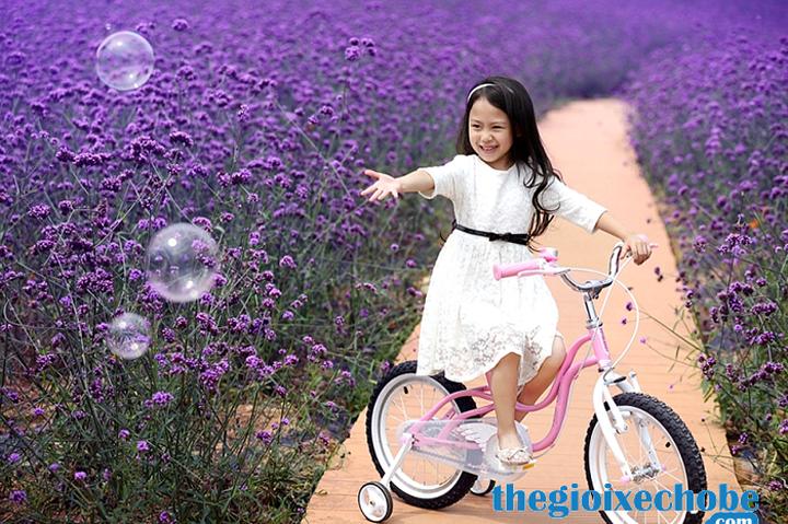 Xe đạp trẻ em RoyalBaby Littel Swan RB-18